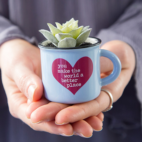 Mini Mug Succulent You World Better