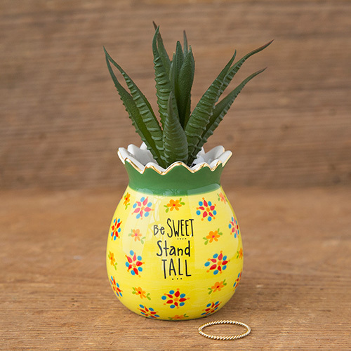 Pineapple Succulent