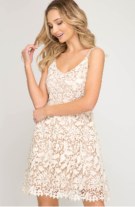 Sleeveless Crochet Lace Fit and Flare Dress