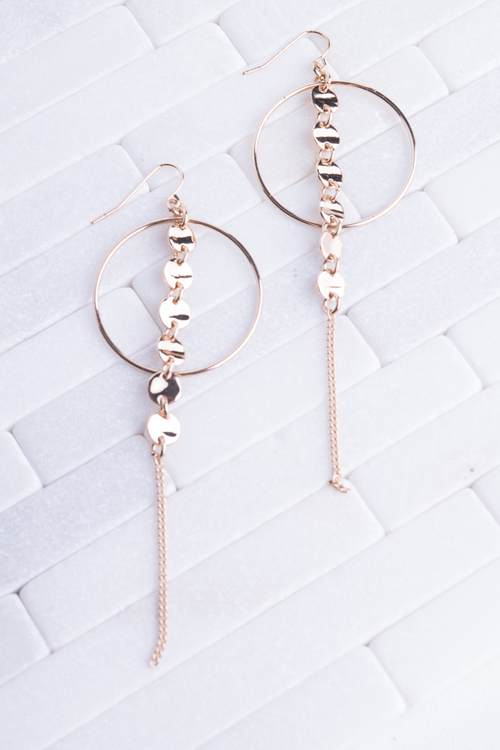 Circle Chain Long Dangle Earring