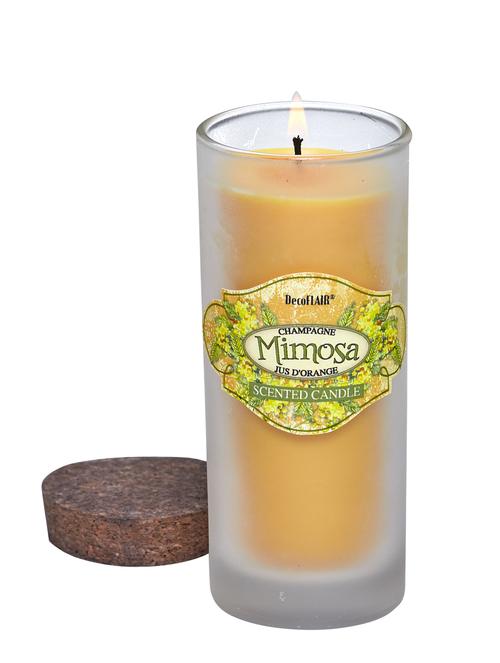 Highball Glass Mimosa