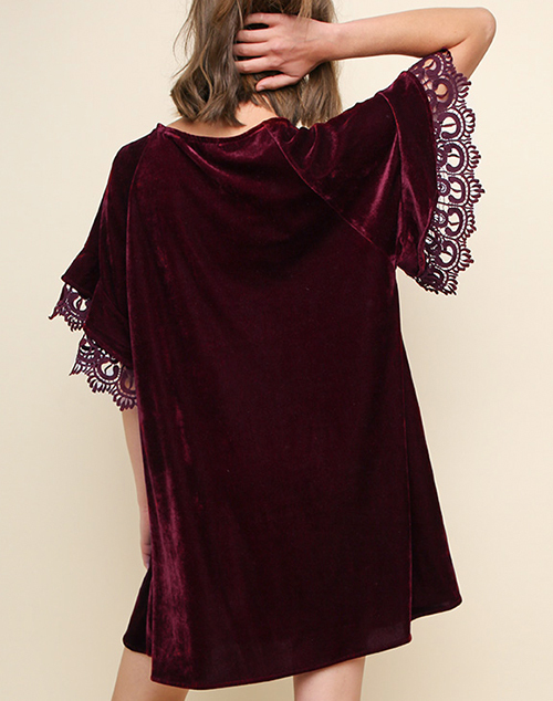 Short Lace Sleeve Velvet Dress