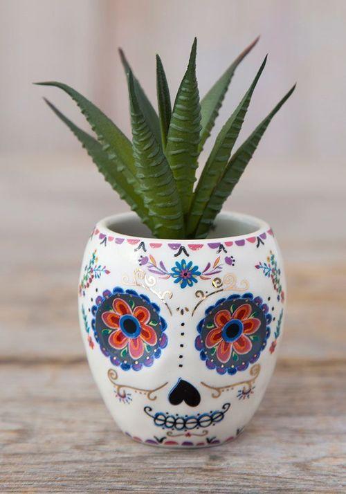 Critter Succulent Sugar Skull