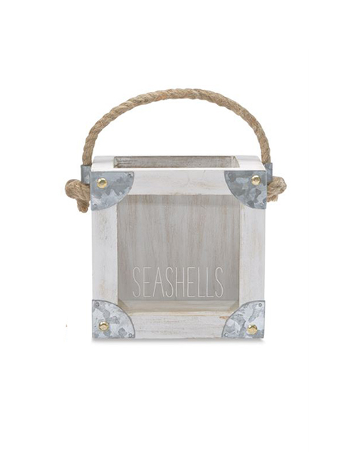 Seashell Display Box With Tin