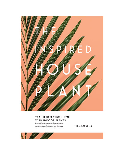 The Inspired House Plant