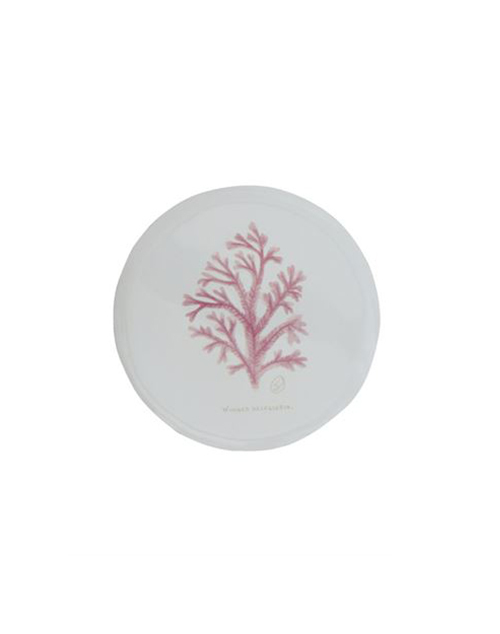 Round Enamel Coral Plate
