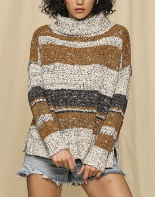 Multi Color Striped Turtle Neck Sweater