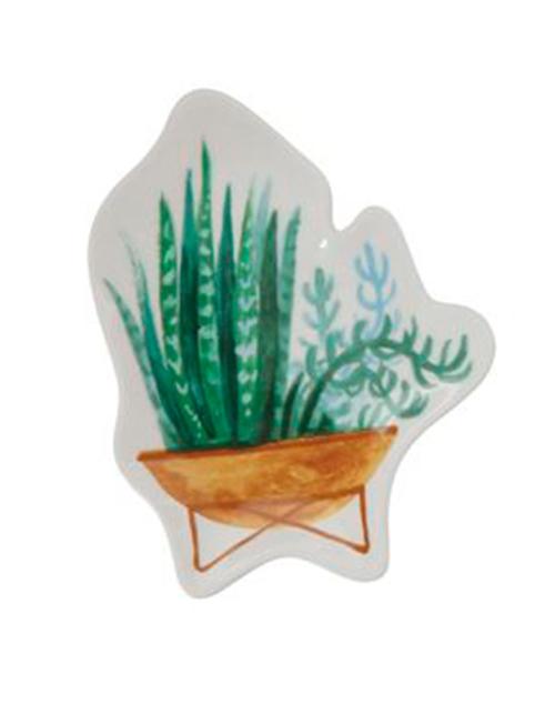 Succulent Plant Shaped Dish