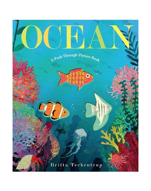 Ocean A Peek-Through Book