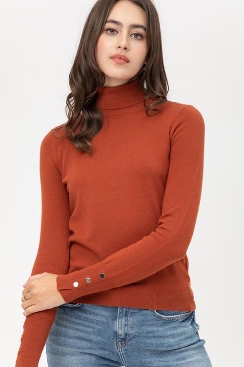 Rust Light Weight Turtleneck Sweater
