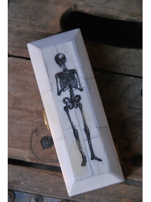Skeleton Coffin Box