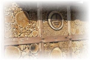 bijenhotel bouwen