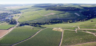Chablis Grands Crus panoramic shot