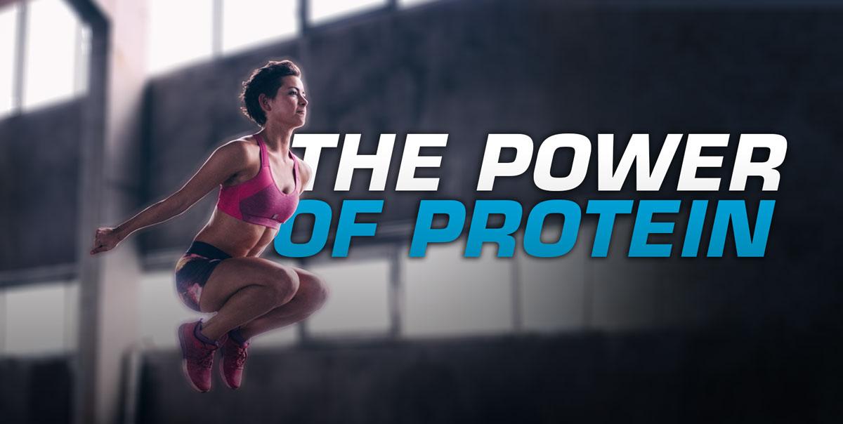 el poder de la proteína