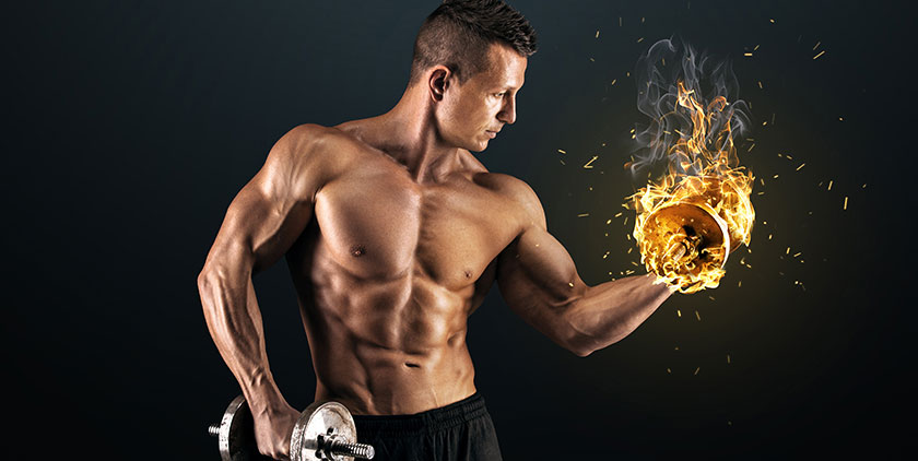 burn fat for fuel