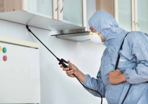 Work with a Pest Control Professional