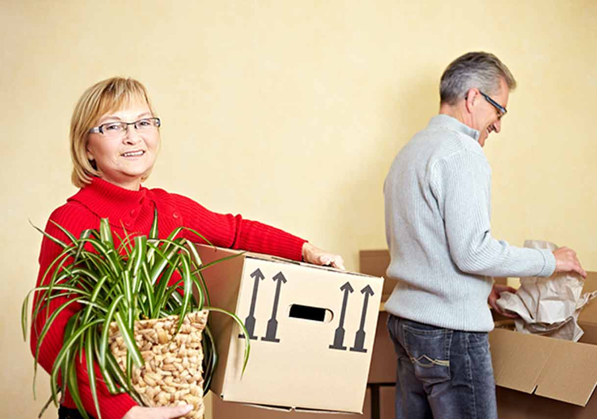 transporting plants  tips from the american moving  u0026 storage association