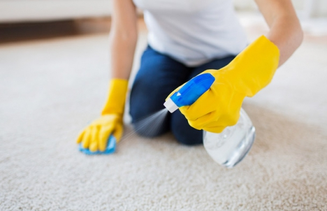 Clean spots from carpets immediately