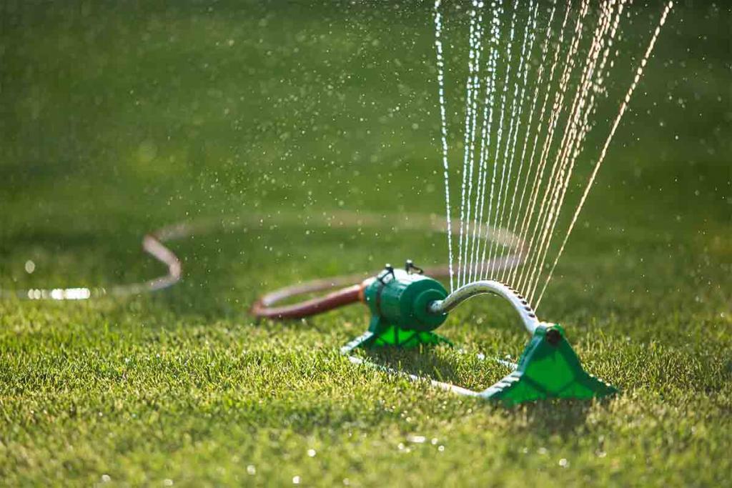 sprinkler watering bright green grass