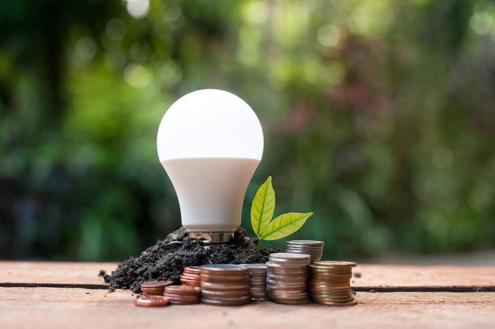 LED light bulb with coins and growing plant