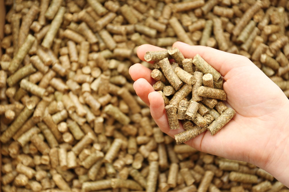 woman's hand holding wood pellets