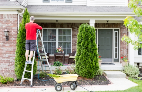 Man trimming hedges in front of his home