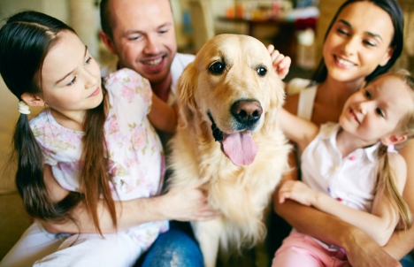Happy Dog With His Family