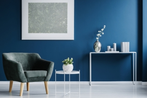Dark colored wall creates cozy livingroom