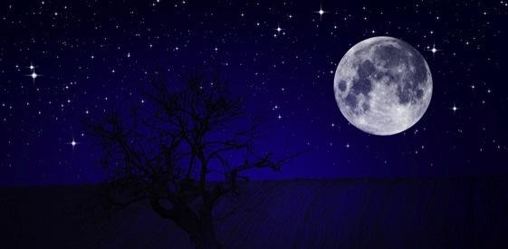 João 15: Sob a luz da lua cheia