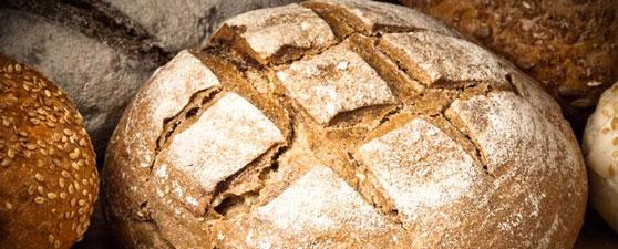 Juan 6: ¡Ese Jesús es un pan!