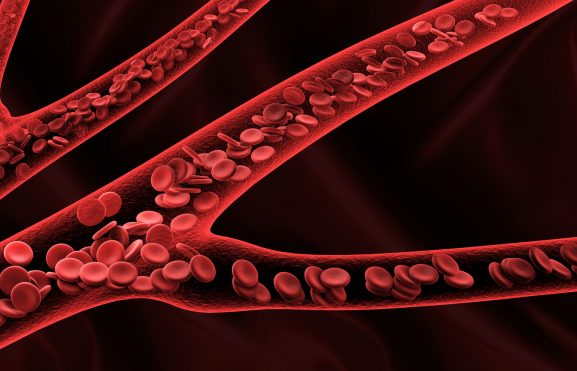 Pensamento #14 — Um novo sangue em suas veias