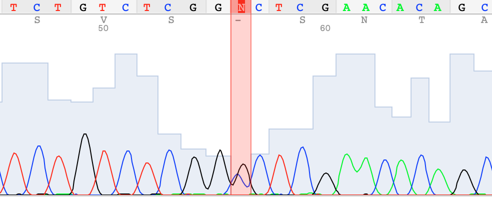 chromatogram for an hcm mutation in cats