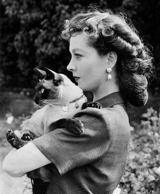 vivien leigh with her cat named new boy