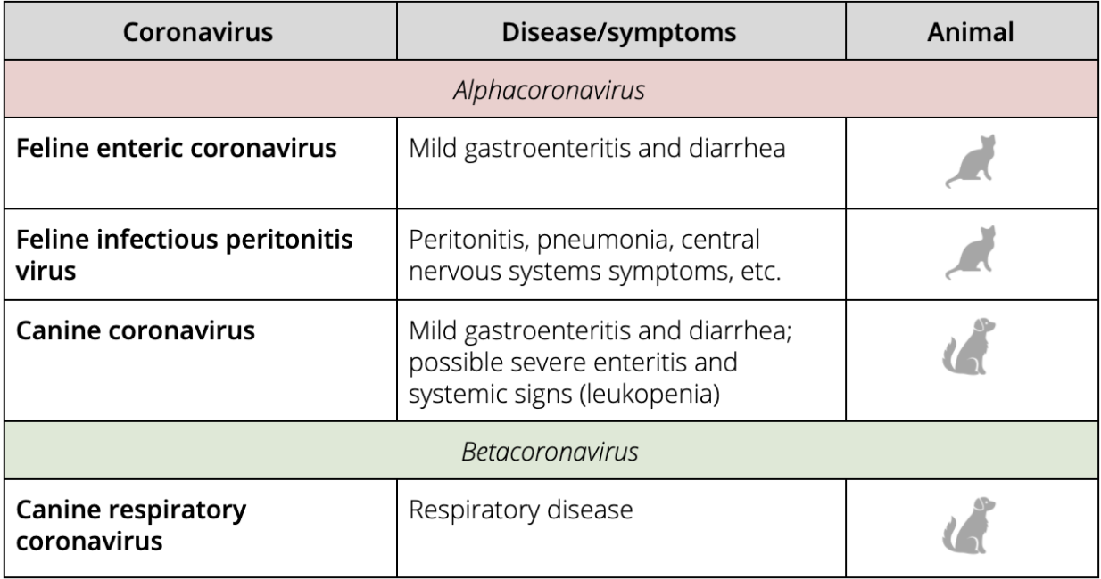 Pet coronavirus infections of veterinary significance (informed by Fenner's Veterinary Virology ).