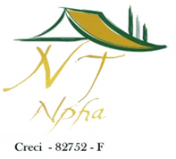 NT Alpha