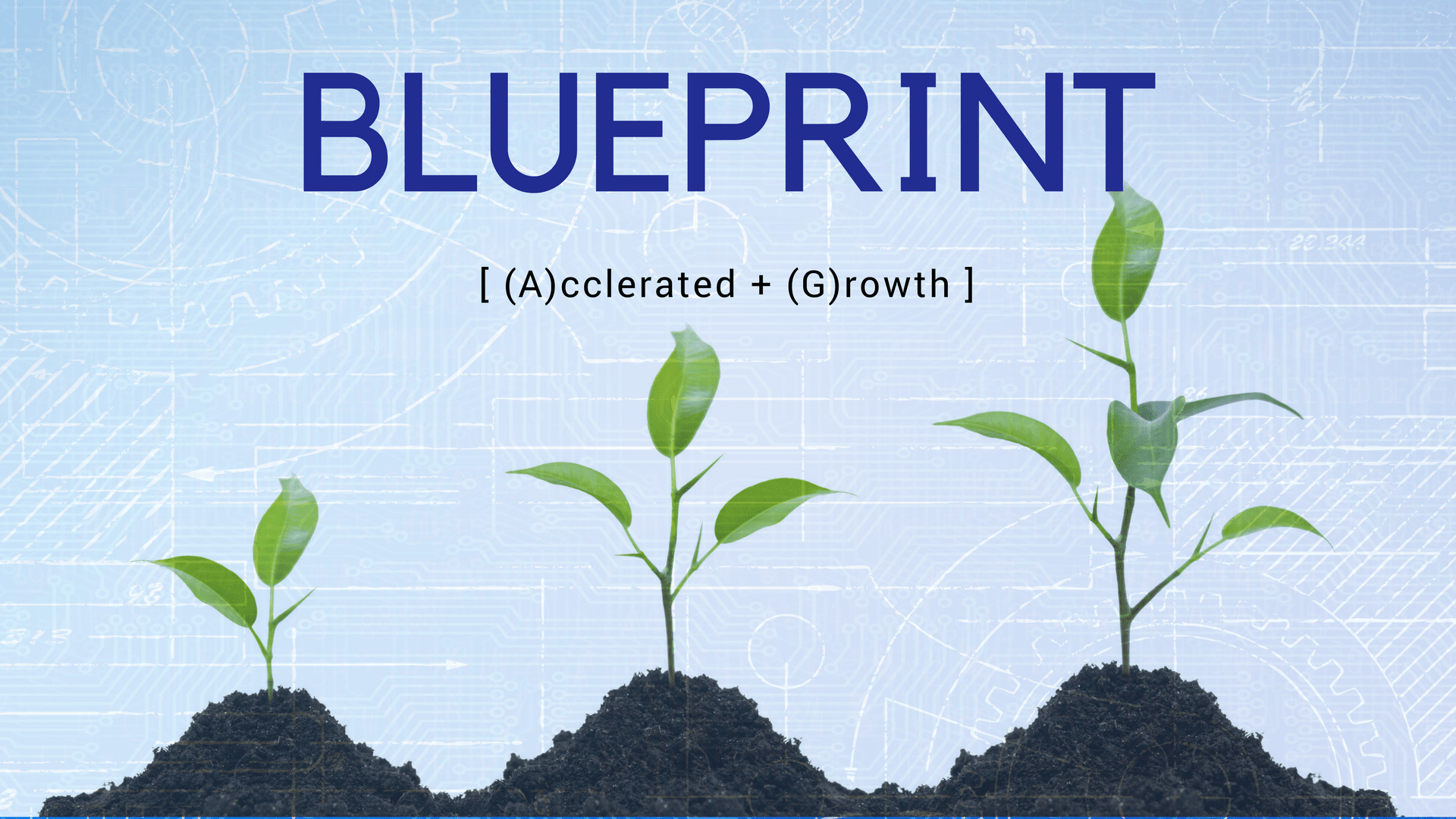 Digital main street media blueprint for accelerated growth digital main street media blueprint for accelerated growth digital main street media malvernweather Choice Image