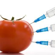 Technologie et chimie alimentaire