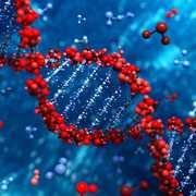 BB2705 Genetic Engineering and Immunobiology