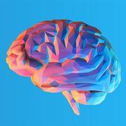 Mnemonic & Memory Crash Course