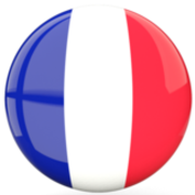 ► Using French Vocab