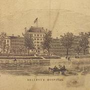 Bellevue Medicine