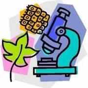 Bio 2 - Lab
