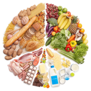 Food Preperation And Nutrition