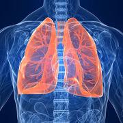 Respiratory System (CA)