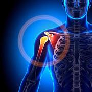 Ortopedia - SBOT
