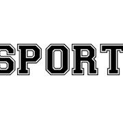 GCSE Sport (own)