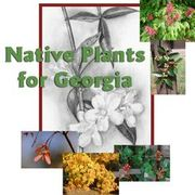 Native Plants of Georgia, USA (Work-in-progress)