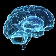 MCAT Psychology