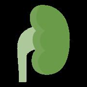 (5) Nefrologia