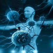 Term 3 - Immunology & Micro